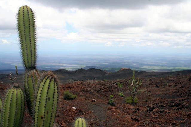 Sierra Negra Parasite Volcano Field