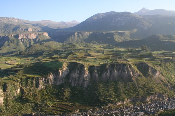 Colca Canyon in all it's glory