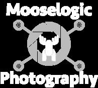 Mooselogic Photography